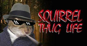 squirrel thug
