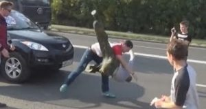 Russian Driver Fight
