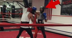 Conor McGregor Sparring with Boxer
