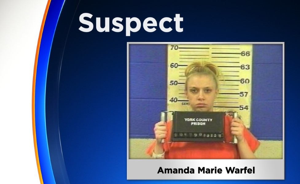 Amanda Warfel