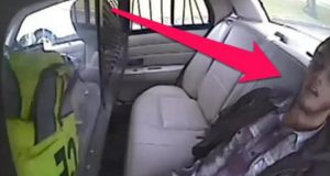 Suspect Thrown From Cruiser