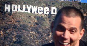 steve-o hollyweed