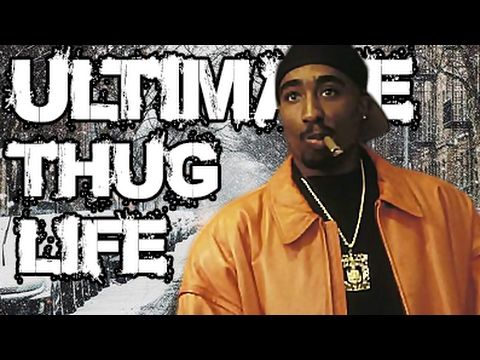 Thug Life Videos 2017