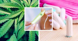 Weed Tampons