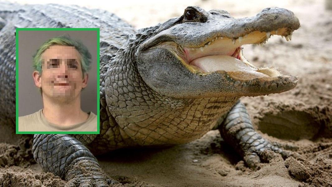 meth-man-florida-alligator