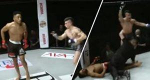 MMA Head Kick Knockou