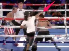 Spectator Hits Boxer